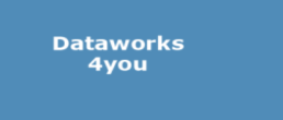 LogoDataWorks4You